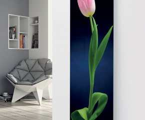 Ximax Glass Designer Radiator P64 Pink Tulip on Black Image